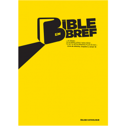 Bible en Bref (lot de 50 ex)